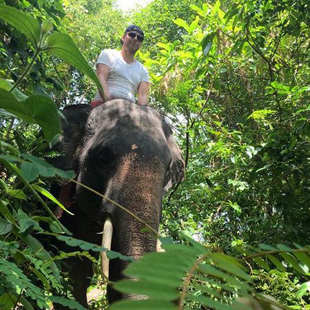 Jungle Walk and Jungle Packages