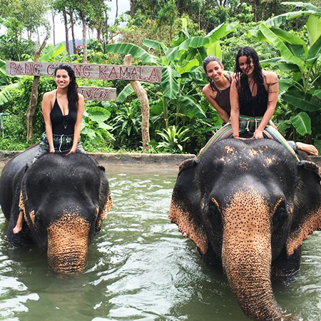 Bath & Showering with Elephants